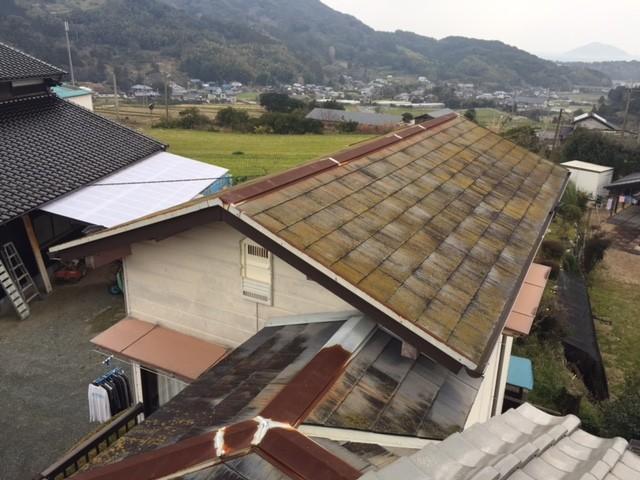 yosizumi (3)
